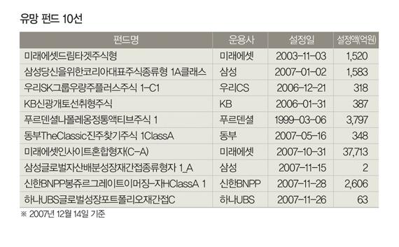 삼성 등 대형사 간판 펀드 유망 해외는 이머징 시장 분산형 각광