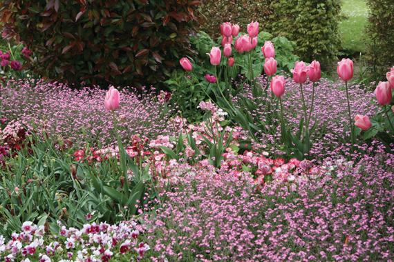 세상에서 가장 아름다운 모네의 정원