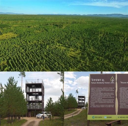몽골 '유한킴벌리 숲', 기차여행·생태관광 상품으로 유명세