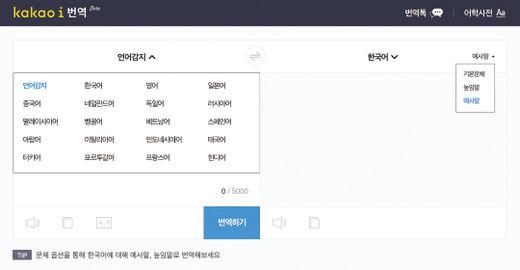 카카오 i 번역 사이트