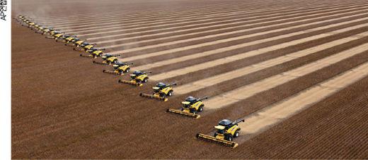 브라질의 콩 수확 장면.