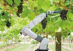 농사 현장의 차세대 주인공, 농업용 로봇