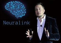 인간의 뇌에 AI를 연결하라…'뉴럴링크 기술' 어디까지 왔나