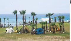 대세가 된 캠핑, 쑥쑥 크는 캠핑산업